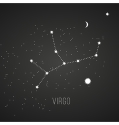 Astrology sign Virgo on chalkboard background vector image vector image