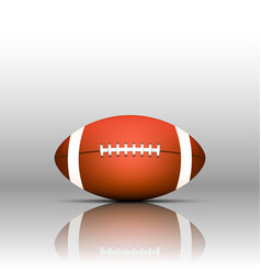 american football isolate on white background vector image