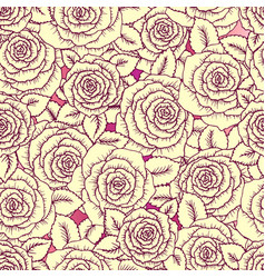 beautiful vintage seamless pattern made of roses vector image
