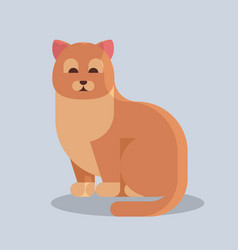 cute cartoon cat icon kitten sitting alone flat vector image