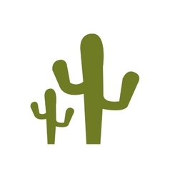green cactus plant vector image