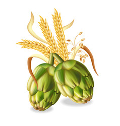 hops and wheat ears realistic green fresh vector image