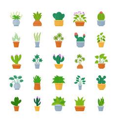 Houseplants flat icon set vector