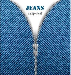 Jeans zipper vector