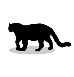 leopard wildcat black silhouette animal vector image