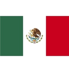 Mexico flag image vector image
