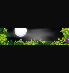 Night scene with fullmoon over the garden vector