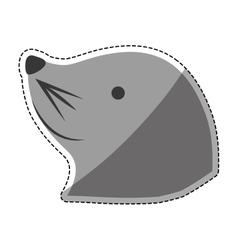 Sea lion cartoon vector