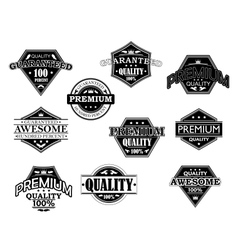 set labels and banners in retro style vector image