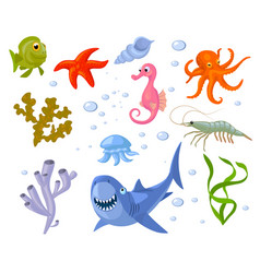 Set of cartoon sea animals and weeds vector