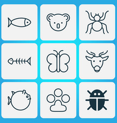 zoology icons set with globefish paw butterfly vector image