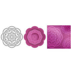 beautiful flowers mandala with repeated elements vector image