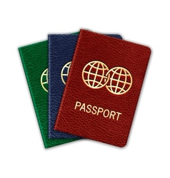 Realistic Passport Set Isolated On White vector image vector image