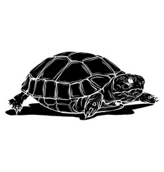 Black silhouette turtle icon cartoon tropical vector