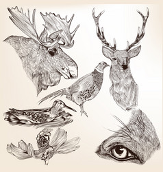 collection hand drawn animals for design vector image