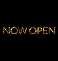 Golden glitter isolated standard font word open vector