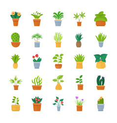 Houseplants flat icon collection vector