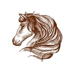 Profile of horse with flowing mane sketch style vector