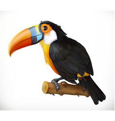 Toucan 3d icon vector image