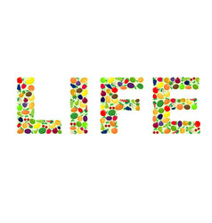 life with fruit vector image