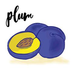 doodle hand drawn prunes vector image vector image