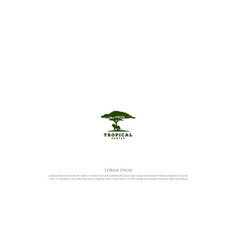 African acacia tree with lion silhouette vector