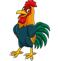 cartoon rooster posing vector image
