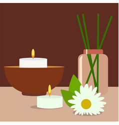Colorfull spa tools and accessories herbs rolled vector