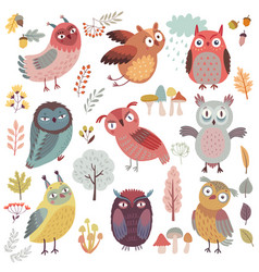 cute woodland owls funny characters with vector image