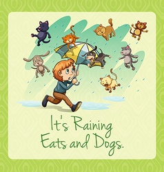 Its raining cats and dogs idiom vector image