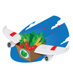 airplane winged carton full of healthy food vector image vector image