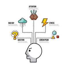 infographic related to the human mind image vector image