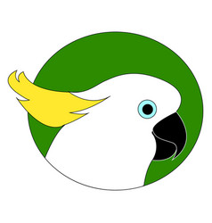 Cockatoo parrot on white background vector