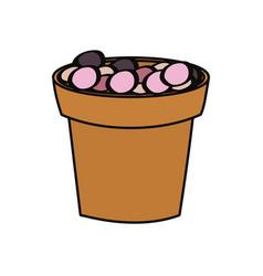 flowerpot icon image vector image