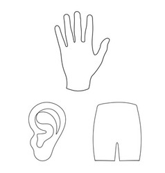 Part of the body limb outline icons in set vector