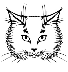 cat white vector image vector image