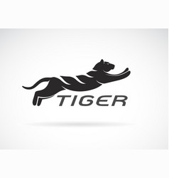 black tiger design on white background wild vector image