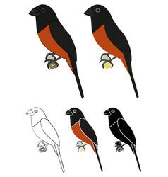 Curio bird in profile view vector