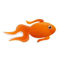 cute gold fish icon cartoon style vector image
