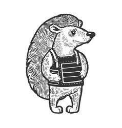 hedgehog in body armor sketch engraving vector image