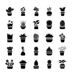 Houseplants glyph icon pack vector