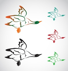image of an flying wild duck vector image