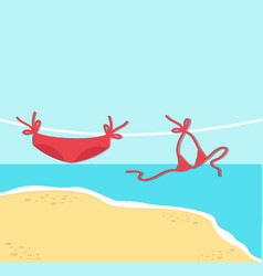 red bikini on rope with summer beach background vector image