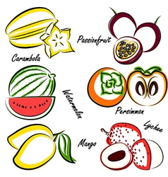 Thai fruit4 vector