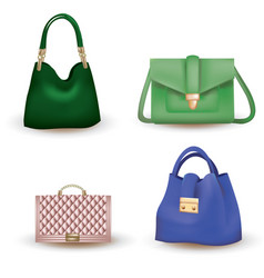 Woman bag set on white background vector