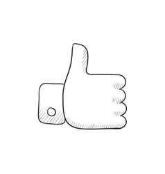 Thumbs up sketch icon vector image vector image