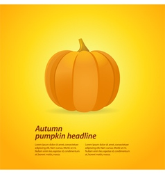 pumpkin on oragne background vector image vector image