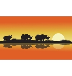 silhouette of a rhinoceros africa Hill vector image