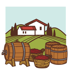 winery and vineyard wine barrels and grape vector image
