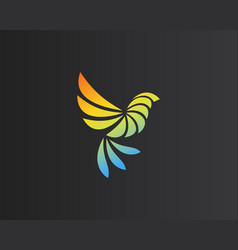 abstract bird parrot logo design creative color vector image